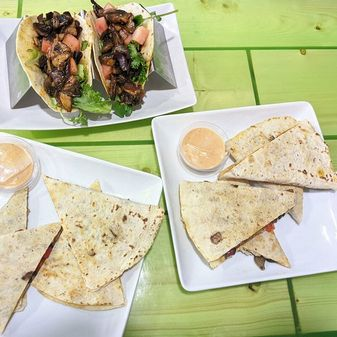 Refocused Vegan Tacos and Quesadillas Baltimore